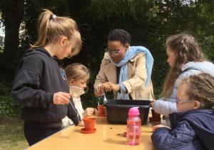 6 mai 2017 - Planter des graines de tournesol